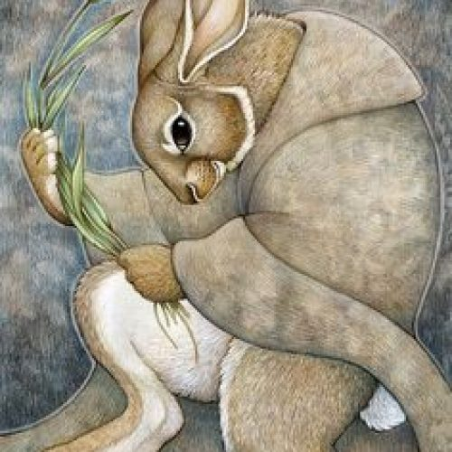 Öykü: Tavşan Yahnisi | Yigilante Kocagöz