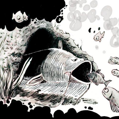 Öykü|Göl Sakinleri | Yigilante Kocagöz